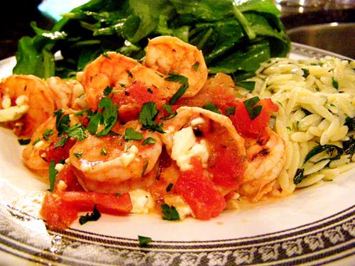 shrimp_final