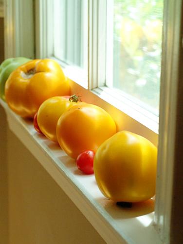blat_tomatoes